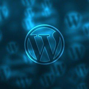 WordPress Hosting für Starter und für Profis